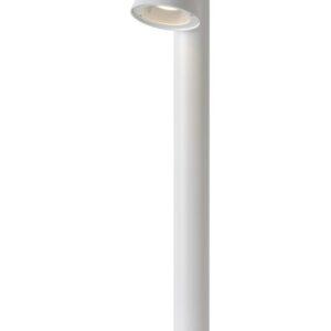 DINGO LED 14881/70/31